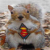 supersquirrel agony aunt